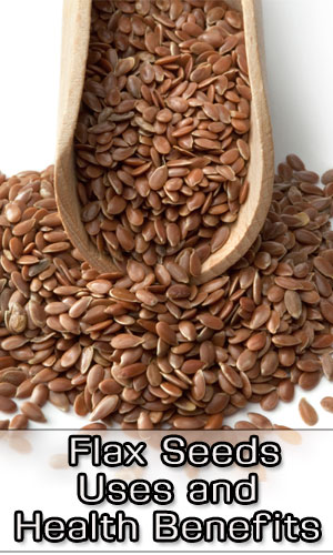 Flax Seeds Uses and Health Benefits