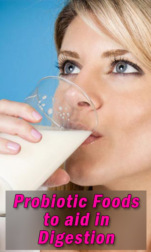 Probiotic Foods to aid in Digestion